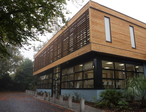 How Long Does Timber Cladding Last?
