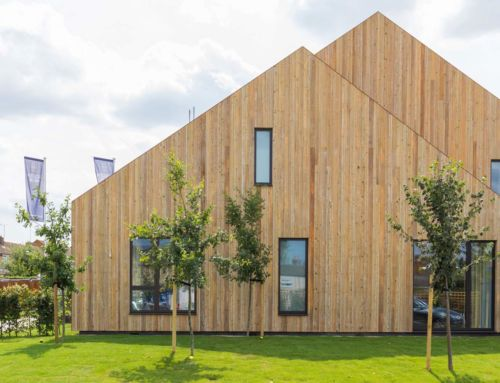 Examples of Eco-Friendly Building Materials