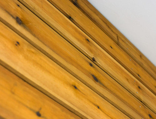 Larch Vs Cedar Cladding – Deciding What Timber Cladding to Use